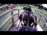 Gilles Moussu - Sandringham 2013 - Obstacle 4 - Concours d'attelage à 4 poneys