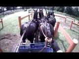 Gilles Moussu - Sandringham 2013 - Obstacle 6 - Concours d'attelage à 4 poneys