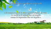 Le Paradis - Hadiths ISLAM