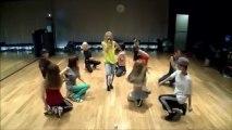 2NE1 - Falling in Love mirror ver.
