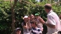 Monkeys at London zoo keep cool in scorching sun