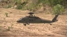 Heli-Max BLACK HAWK 1/43 Scale Brushless Aerobatic Helicopter