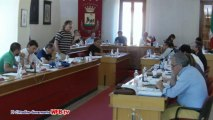Consiglio comunale 8 luglio 2013 Punto 1 mozione lavoratori ecx LSU intervento Arboretti