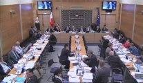 1er juillet 2013 - Commission des lois - Commission des lois : Modernisation de l'action publique territoriale et affirmation des métropoles