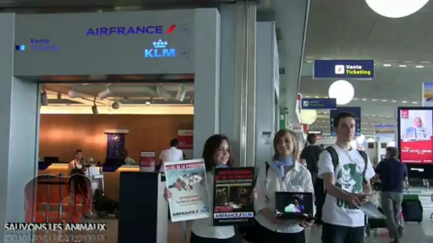 Action contre Air France dans l'aéroport de Roissy (20.07.2013)