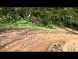 Heavy damage to the roads of Guptkashi