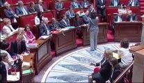 Cécile Duflot répond à Jean-Luc Laurent lors des QAG du 23/07