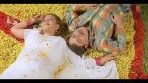 Aay Haay Paatar Tiriya Ho (Bhojpuri Video Song) Chalat Musafir Moh