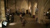 Marché aux vins : dégustation de vins et visite de caves d'exception au coeur de Beaune