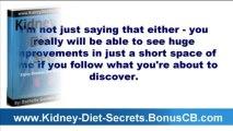 Kidney Disease Diet Renal Failure Diet - Kidney Diet Secrets - Dialysis Renal Cookbook Recipes