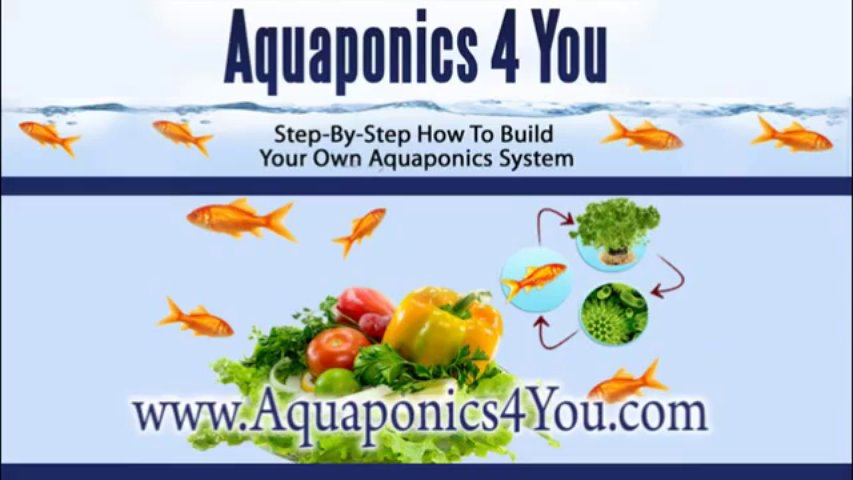 Aquaponics 4 You — Step-By-Step How To Build Your Own Aquaponics System