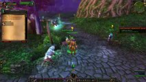X Elerated Warcraft Guides   1 85 WoW Leveling Guide   WoW Gold Guide
