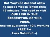 fat loss 4 idiots diet plan reviews