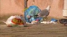 27 ans & 7 jours à Venise - Des poubelles et des pieds