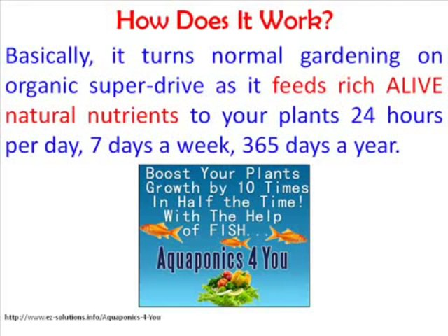 Watch Aquaponics 4 You – Aquaponics 4 You Review – Aquaponics 4 You Review