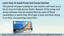 Penny Stock Egghead Pump and Dump + Penny Stock Egghead Picks