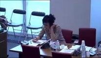 Commission des affaires culturelles et commission des affaires sociales : Emploi dans les métiers artistiques (Mercredi 17 avril 2013)