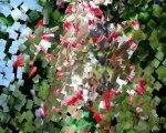 Geyve bağlarbaşı Köyü Cırcır Böceği Geyve Yöresi Aziz Yavuz
