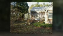 Dennis Harwich landscapers landscaping contractors MA