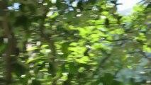 Hautes-Alpes : mort en parapente