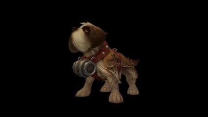 WoW Patch 5.4 : Saint Bernard Dog Pet