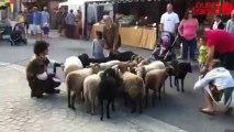 Médiévales de Domfront - Le marché des artisans en avant