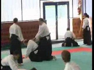 Stage Iaido Aikido Michel Prouveze