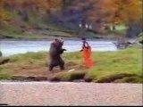 [PUB] john west salmon - bear fight
