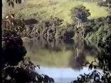 Ovnis - Vidéo - [Brésil] Ovni ou drone - 1998