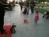 Une fillette joue avec un chien... Trop mignon... mais le chien est une marionnette!