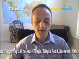 Farm Raising Tilapia, How is Tilapia Farmed, Tilapia Farming Methods, Tilapia Farms in USA