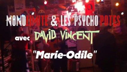 [N&PP] en acoustique feat. DAVID VINCENT - Marie Odile