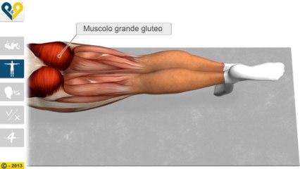 Leg Pull Down (Stabilizzazione con sollevamento della gamba)