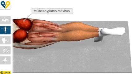 Leg Pull Down (Estabilização com elevação da perna)