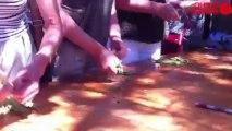 La fête paysanne à Ribou - Traditions et saveurs paysannes
