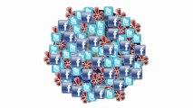 Social Media Consultant toronto - (647)-234-9942
