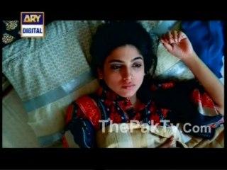 Mere Harjai - Episode 19 - August 9, 2013