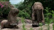 1028.Khajuraho Temples
