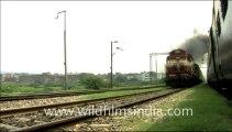 955.Blue Passenger Train in India