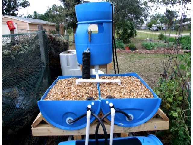 Tips for building an aquaponic system