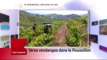 Agenda Sortir France 3 Languedoc-Roussillon du jeudi 29 août 2013