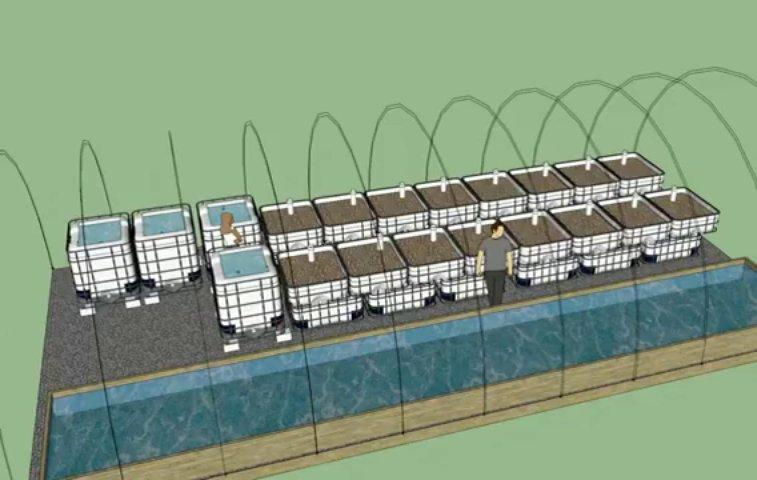 3D Aquaponics Greenhouse Model