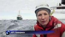 Russie: Greenpeace défie les autorités dans l'Arctique