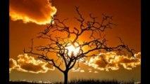 Beautiful sunsets ... beautiful music ...(Armik-guitar)