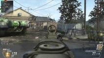 Black Ops 2 | 64 Flawless Gunstreak w/ MTAR | Driving