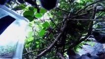 Monkey takes selfie after stealing tourist's camera in Bali