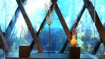 """Exposition """"Nigéria, arts de la vallée de la Bénoué"""" au musée du quai Branly"""