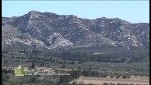 Territoire dans les Alpilles - 30/08/2013 (Partie 2)