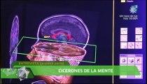 Cerebro: Memoria y olvido (Mª Teresa Bajo)