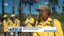 Brasil: incendios controlados para proteger el medioambiente   Global 3000